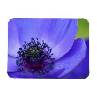 Blue Poppy Flower Magnet
