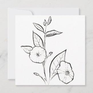Blue Potato Bush Flowers Note Card