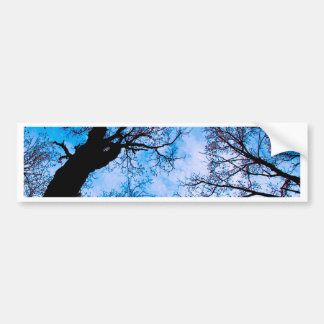 BLUE POWER OF TREE