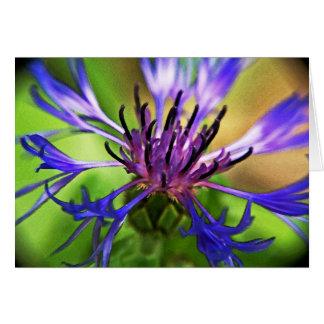 Blue Purple Flower Card