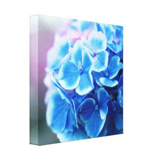 Blue Purple Hydrangea Canvas Print