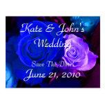 Blue Purple Rose Post Card