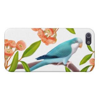 Blue Quaker Parrot iPhone Case