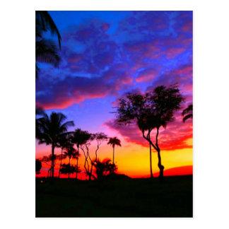 Blue Red Sunset Exotic Hawaiian Beach Palm Trees Postcard