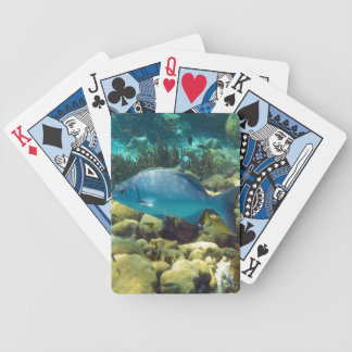 Blue Reef Fish Bicycle Playing Cards