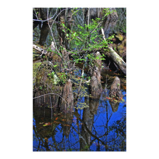 Blue Reflections in the Slough (Fort Myers, FL)- F Stationery