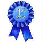 Blue Ribbon 1st Place Photo Sculpture Button