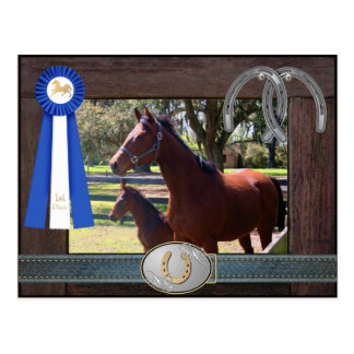 Blue Ribbon Mare and Foal Postcard