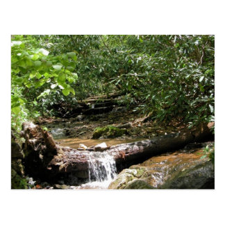 Blue Ridge Mountain Creek Post Card