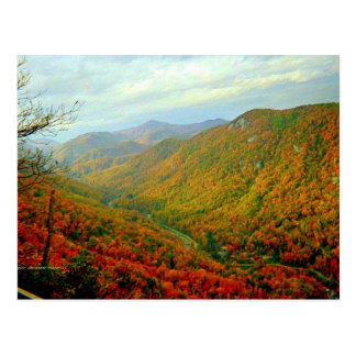 Blue Ridge Mountain Range of North Carolina Postcard