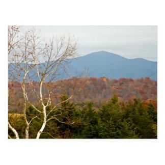 Blue Ridge Mountains VA Landscape Photo Shenandoah Postcard