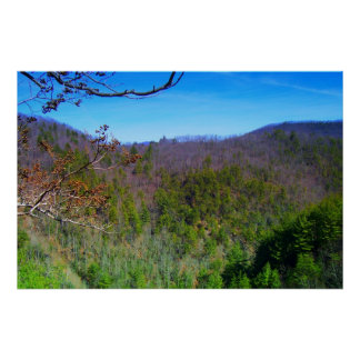 Blue Ridge Mountains View Poster