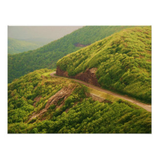Blue Ridge Parkway at Craggy Gardens Poster