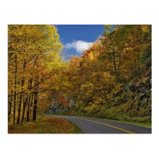 Blue Ridge Parkway curving through autumn colors Postcard