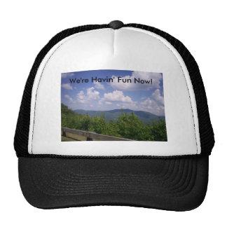 Blue Ridge Parkway Mountain View Mesh Hats