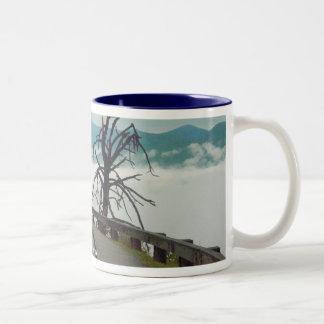 Blue Ridge Parkway Coffee Mugs