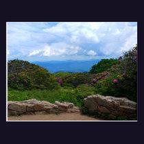 Blue Ridge Spring Postcard