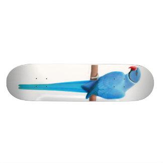 Blue Ringneck Parrot Skateboard