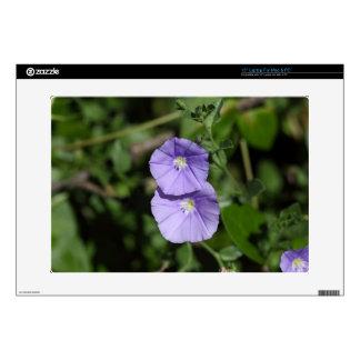 """Blue rock bindweed (Convolvulus sabatius) 15"""" Laptop Skins"""
