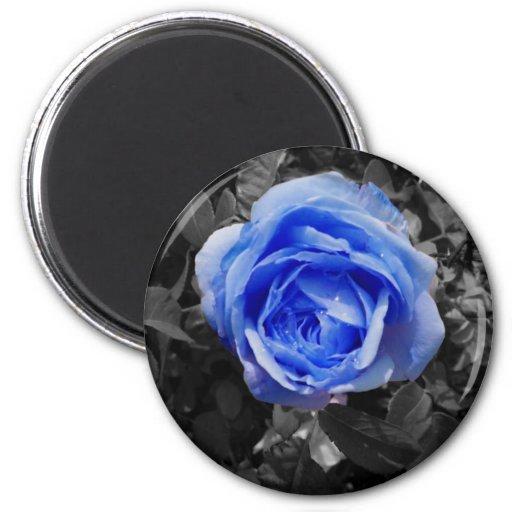Blue Rose 2 Inch Round Magnet