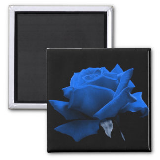 Blue Rose 2 Inch Square Magnet