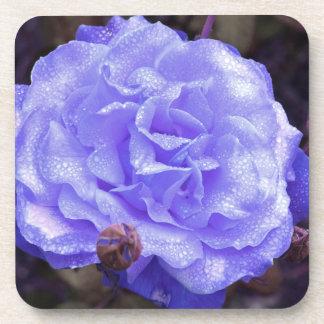 Blue Rose Coaster Set