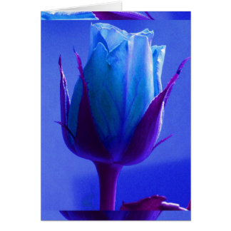 Blue Rose Delight Card I - Customizable