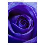 Blue Rose Note Card