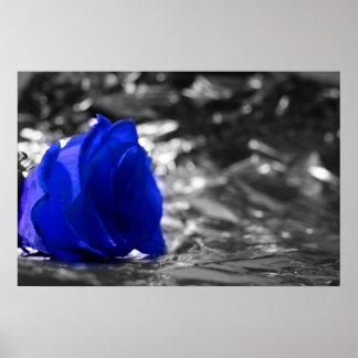 Blue Rose On Left Side Silver Background Poster
