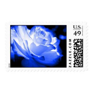 Blue Rose Postage