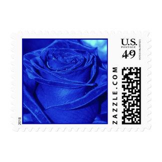 Blue Rose Stamp
