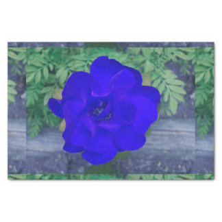 "BLUE ROSE WRAPPING TISSUE 10"" X 15"" TISSUE PAPER"
