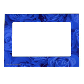 Blue Roses Photo Fridge Magnets