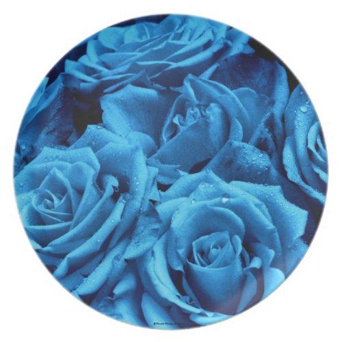 Blue Roses Plate fuji_plate