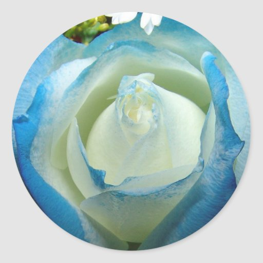 BLUE ROSES ROUND STICKER