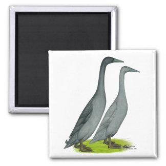 Blue Runner Ducks Refrigerator Magnets