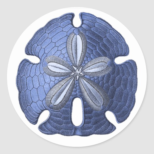 Blue Sand Dollar Classic Round Sticker