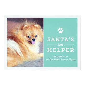 Blue Santa's Helper- Pet Photo Holiday Cards