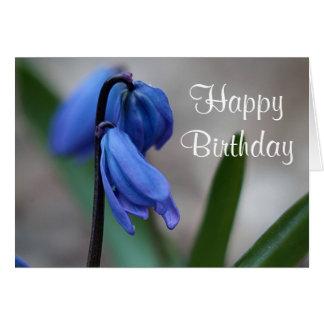 Blue scilla flowers card