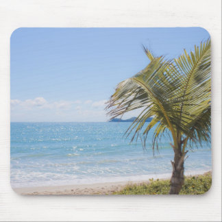 Blue Sea and Coconut Palm Photograph Mouse Pad