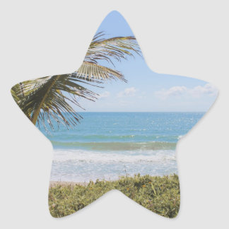 Blue Sea and Coconut Palm Photograph Star Sticker