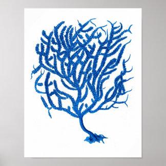 Blue Sea Coral Print #10 Home Decor Art