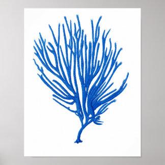 Blue Sea Coral Print #12 Coastal Wall Art Print