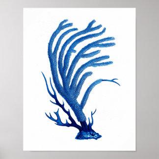 Blue Sea Coral print #2 Coastal Wall Art Decor