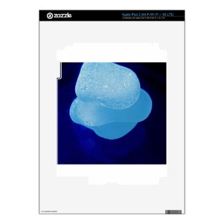 Blue Sea Glass Reflections Decals For iPad 3