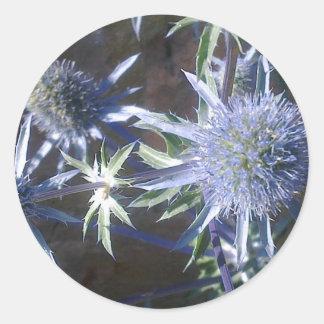 Blue Sea Holly Sticker