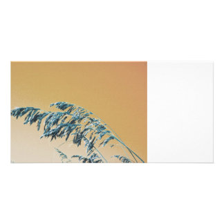 Blue Sea Oats Brown Orange sky picture Photo Greeting Card