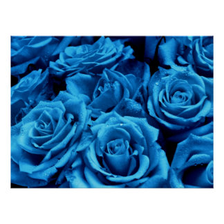Blue Sea of Roses Poster