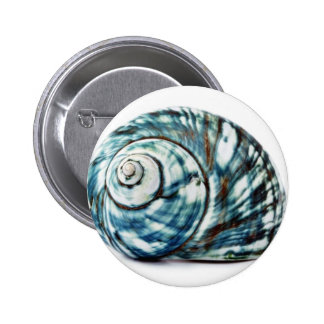 Blue Sea Shell On White Background Buttons