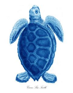 Blue Sea Turtle Bathroom Decor Set
